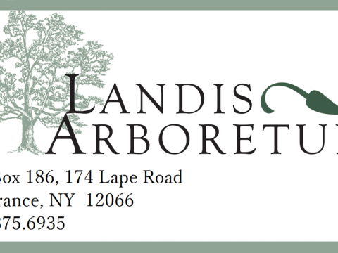 Landis_logo